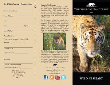 brochure here - The Wildcat Sanctuary