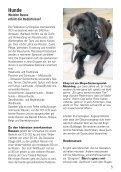 Februar 2012 - Stadtteilverein Kattenstroth - Seite 5