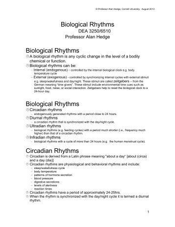 Biological Rhythms - Cornell University Ergonomics Web