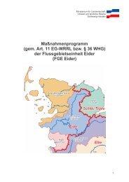 Maßnahmenplan FGE Eider (PDF, 1 MB, Datei ist nicht barrierefrei)