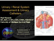 Urinary / Renal System Assessment & Urinary Catheters - UMBC ...