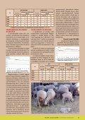 a haszonállatlétszám alakulása magyarországon - VITAMED - Page 2