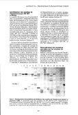 Comparaison de techniques d'identification des Erwinia et des ... - Page 6