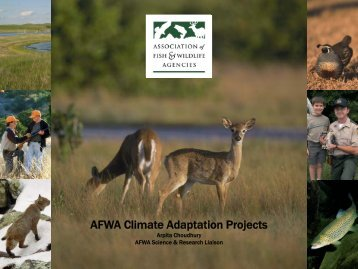 AFWA Climate Adaptation Projects - Regional Collaboration