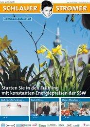 SSW_Stromer-Zeitung_2012-01.pdf - Stadtwerke St. Wendel