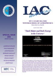 Dark Matter and Dark Energy in the Universe - Instituto de Astrofísica ...