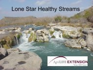 Best Management Practices For Streams - Lone Star Healthy ...