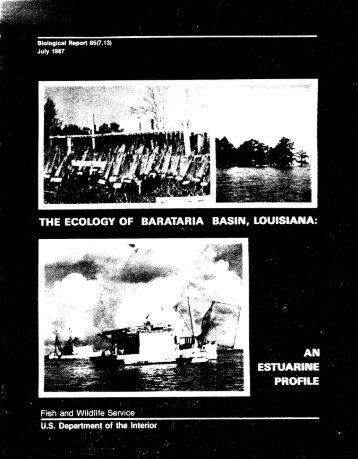 The Ecology of Barataria Basin, Louisiana: An Estuarine Profile