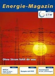 """Der """"E-Check"""" - Stadtwerke Willich"""