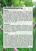 Broschyr-odla-giftfritt - Gislaveds kommun - Page 6