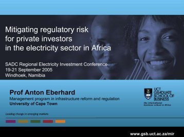 Mitigating regulatory risk for private investors in the electricity sector ...