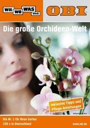 Die große Orchideen-Welt - Obi