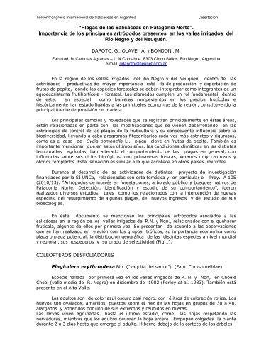 """""""Plagas de las Salicáceas en Patagonia Norte"""". Importancia de los ..."""