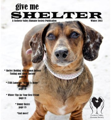 Winter 2013.indd - the Cocheco Valley Humane Society