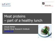 Meat proteins – part of a healthy lunch - Danish Technological Institute