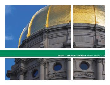 GEORGIA CHAMBER OF COMMERCE ANNUAL REPORT 2008