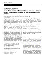 Enhanced cold tolerance in transgenic tobacco expressing a ...