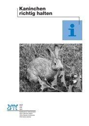 Kaninchen richtig halten - VgT