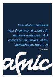 Consultation publique Pour l'ouverture des noms de domaine ... - Afnic