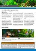 Aquaristik Aquarien -  OBI Baumarkt Franken - Seite 2