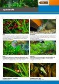 Aquaristik Aquarien -  OBI Baumarkt Franken - Seite 3