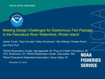 Meeting Design Challenges for Diadromous Fish Passage in the ...
