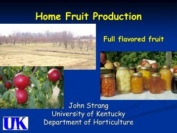 Tree Fruits - Bullitt County Cooperative Extension - University of ...