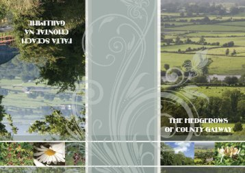 The Hedgerows of County Galway - Galway County Council