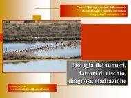 Biologia dei tumori, fattori di rischio, diagnosi, stadi - Associazione ...