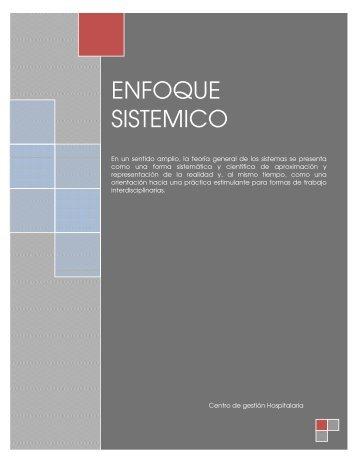 ENFOQUE SISTEMICO - Centro de Gestión Hospitalaria