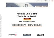 Pedelec und E-Bike Technik im Detail Eine ... - Stenger Bike