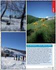 gita pag.62_65.pdf - Varesefocus - Page 4