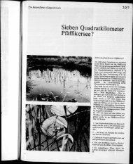 Chronik von Wetzikon 1973 Seiten 397 bis 423 - Wetzipedia