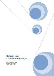 Beispiele zur Exponentialfunktion