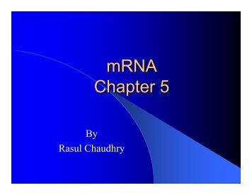 mRNA Chapter 5