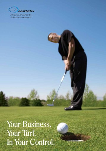 Your Business. Your Turf. In Your Control. - Aesthetix Solutions