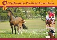 Südpferde - Southern German Horses