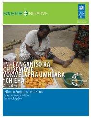 Download Ndebele(3.38 MB) - Equator Initiative