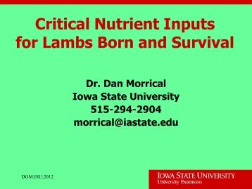 Critical Nutrients for Lamb Survival - Iowa State University