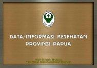 provinsi papua tahun 2011