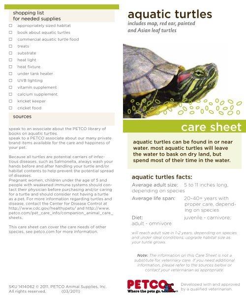Aquatic Turtle - Petco