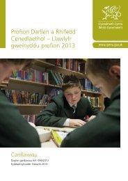 Profion Darllen a Rhifedd Cenedlaethol – Llawlyfr ... - Learning Wales
