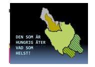 Nödår i Dalarna