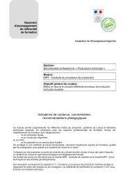 Document d'accompagnement MP4 - ChloroFil