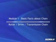 Module 1 – Basic Facts about Chain Roller / Drive ... - Renold Crofts