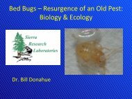 Bed Bugs – Resurgence of an Old Pest: Biology & Ecology