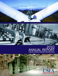 2010 USEA Annual Report - United States Energy Association