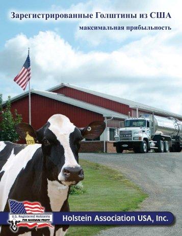 максимальная прибыльность - Holstein Association USA