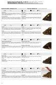 Tè NERO AROMATIZZATO - Mount Everest Tea Company GmbH - Page 3