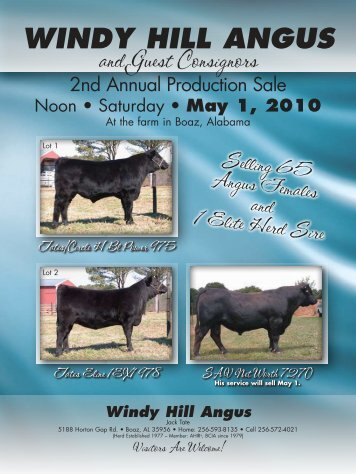 WINDY HILL ANGUS - Angus Journal